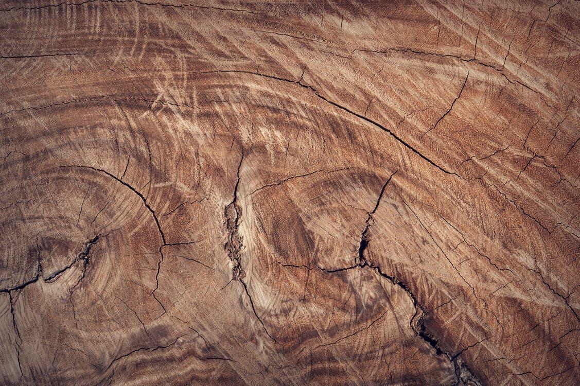 dřevo dekor