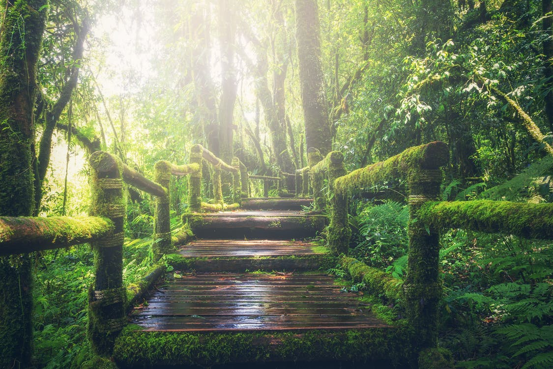les schody